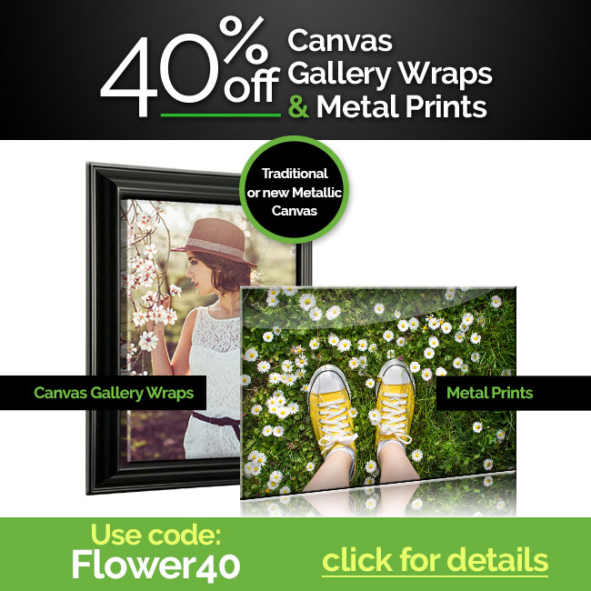40% off canvas and metal prints